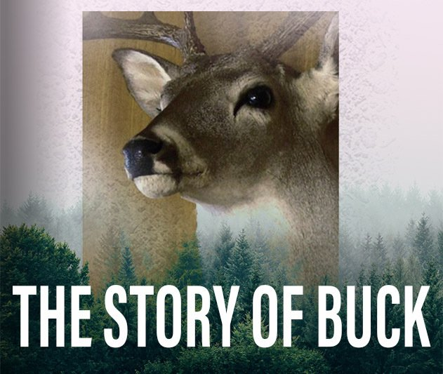 Graphic image linking to site about Buck, the deer in Collision Center TV commercials